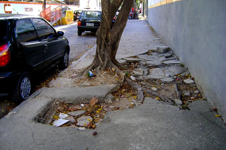 Calçada com piso danificado por raízes de árvores.