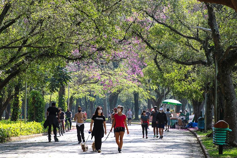 A participação da iniciativa privada na gestão de parques públicos